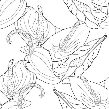 seamless pattern  coloring  anthurium flowers  flamingo.  vector illustration Illustration
