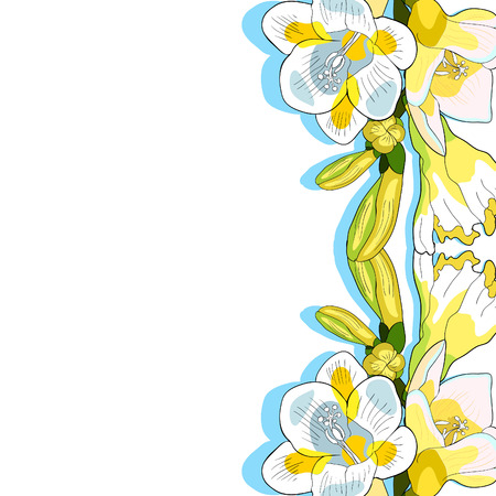 Card with flower freesia kind of iris. vector illustration.