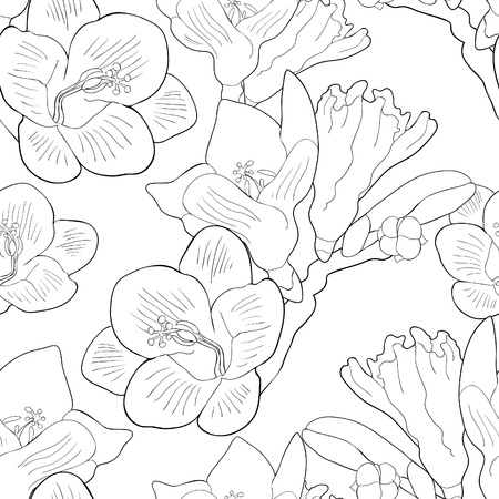 Coloring seamless pattern flower freesia kind of iris. vector illustration. Vectores