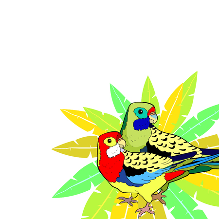 exotic tropics parrot couple roseella green red on palm tree vector illustration
