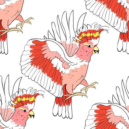seamless pattern exotic  cockatoo parrot  Inca vector illustration
