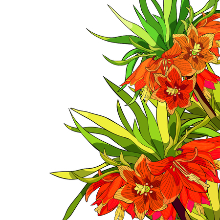 Colorful flower and leaves illustration
