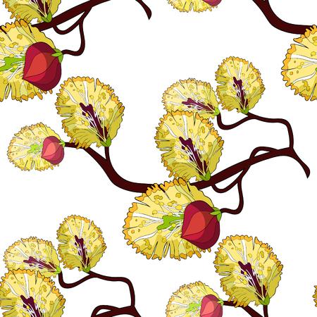seamless pattern willow branch flower spring.  vector illustration