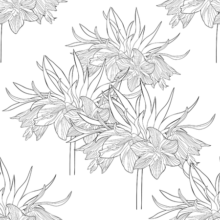 coloring seamless pattern  Fritillaria imperialis flower paradise tree  vector illustration