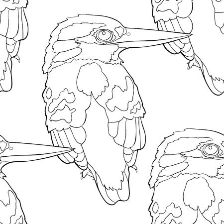 Seamless pattern of Malay Forest Kingfisher bird