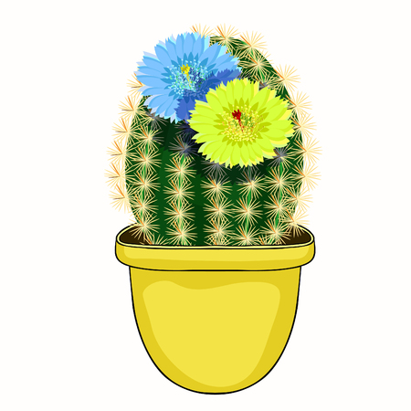 The Mexican cactus flowering in a pot  vector illustration Ilustração