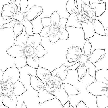 Coloring seamless pattern is daffodil flower spring vector illustration