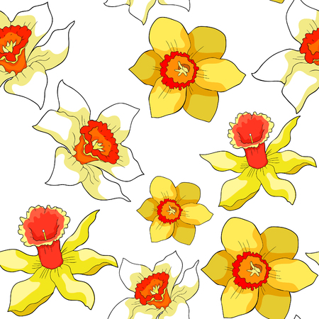 Seamless pattern is daffodil flower spring vector illustration