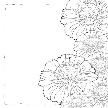 Coloring card tsiniya flower marigolds vector illustration