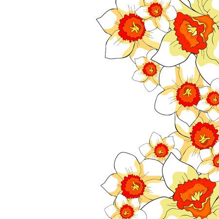 the card  is daffodil flowers  spring  vector illustration Standard-Bild - 100738126