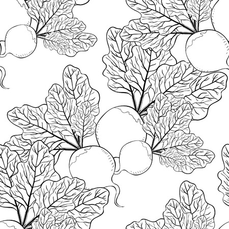 coloring seamless pattern beet with a top green vegetable vector illustration