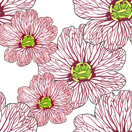 seamless pattern is flower Geranium cinereum  vector illustration