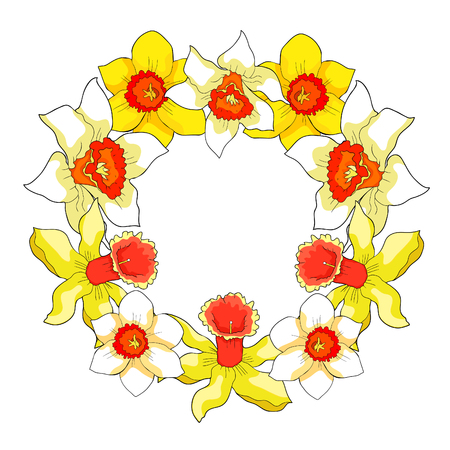 the is daffodil flower spring form of a wreath  vector illustration Standard-Bild - 103671181