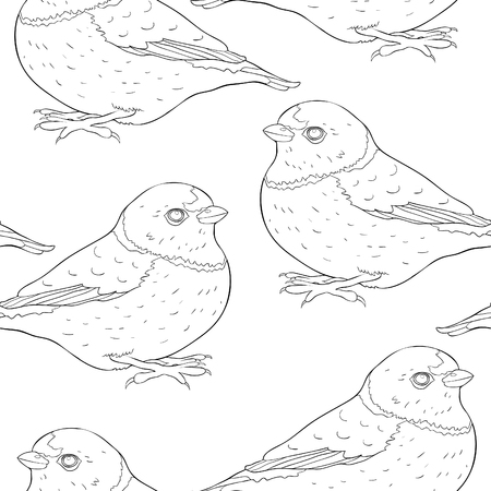 coloring seamless pattern bird green organist Tanager family  vector illustration