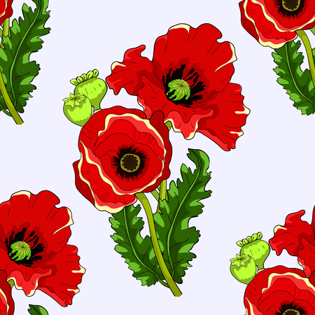 seamless pattern  poppy  bud with seeds  vector illustration Ilustração