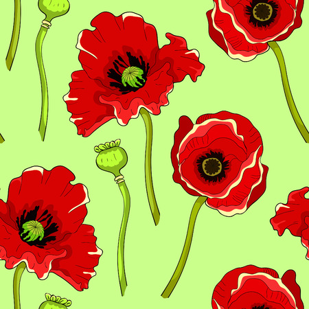 seamless pattern  poppy flower bud with seeds on green  vector illustration Imagens - 116814395