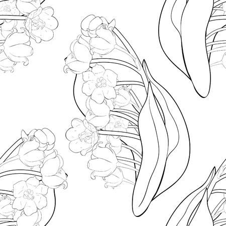 nahtlose Muster Färbung Blume Maiglöckchen Vector Illustration