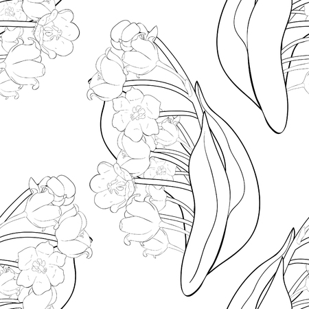 seamless pattern coloring flower lily of the valley vector illustration