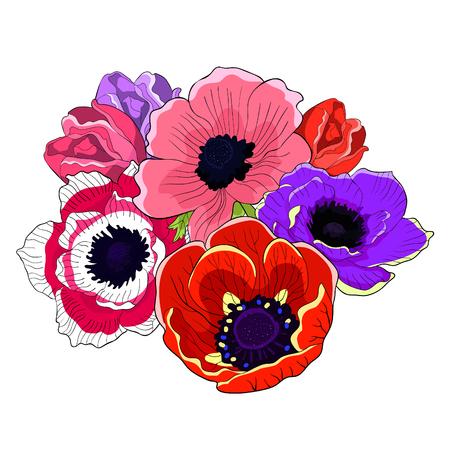 the flowers  bloom japanese anemone vector illustration