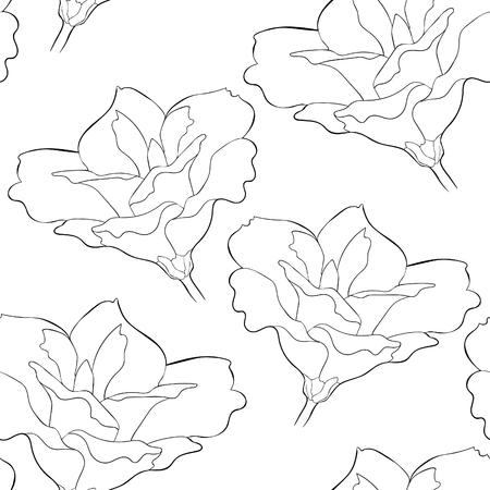 coloring seamless pattern  Peony flowers eustoma indoor plants  vector illustration