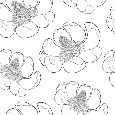 coloring seamless pattern Magnolia obovate flower in bloom vector illustration Imagens - 126375879