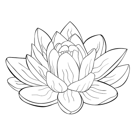 coloring lotus flower spiritual india vector illustration