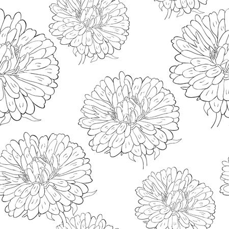 coloring seamless pattern Michaelmas daisy aster spring Flower vector illustration Imagens - 126375908