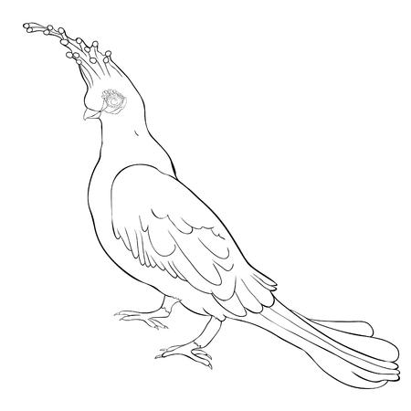 coloring Turako Livingston Bananoed Tropical Parrot  vector illustration