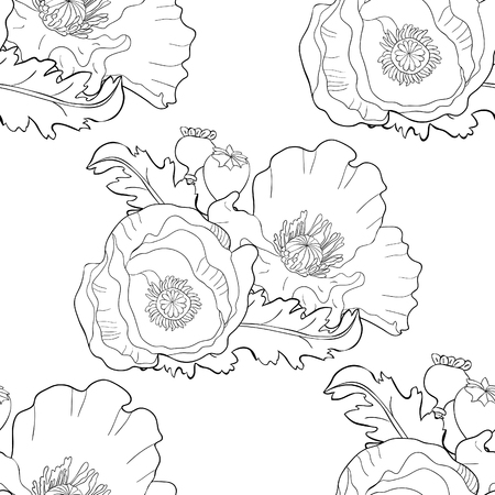 seamless pattern coloring poppy flower bud with seeds  vector illustration Ilustração