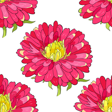 seamless pattern Michaelmas daisy aster spring Flower vector illustration