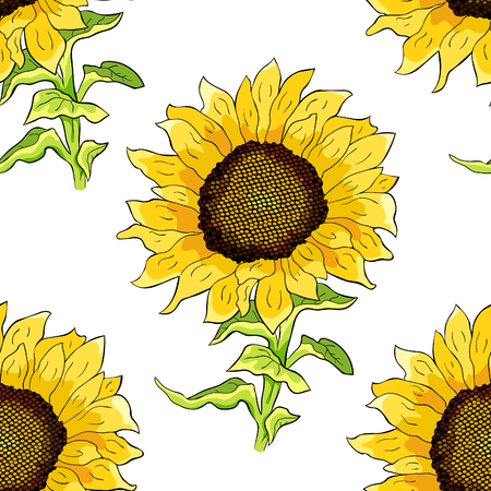 seamless pattern sunflower flower with seeds vector illustration