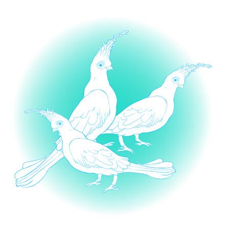 the Turako Livingston Bananoed Tropical Parrot  vector illustration Ilustração