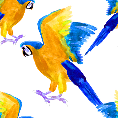 seamless pattern Macaw a parrot yellow blue araruna. watercolor illustration