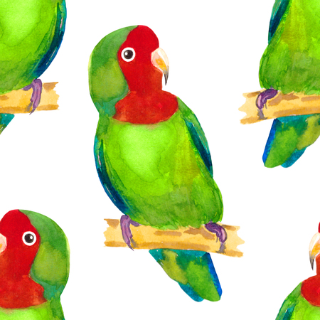 seamless pattern tropical Red-cheeked lovebird parrot watercolor illustration Imagens