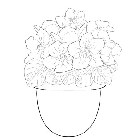 coloring Violet flower of pansies in a pot home  vector illustration