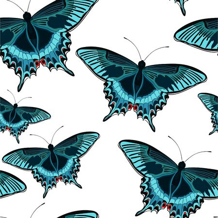 seamless pattern  butterfly Papilio maackii tropical vector illustration