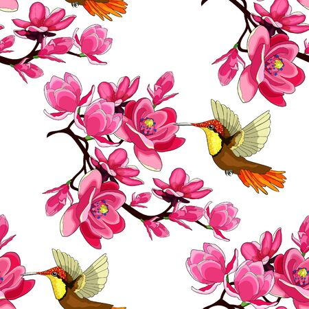 seamless pattern Hummingbird Chrysolampis mosquitus Ruby on flowering magnolia branch vector illustration Illustration