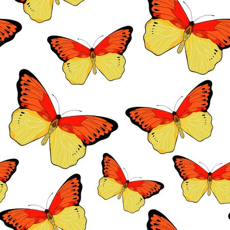 seamless pattern Indonesia exotic Butterfly Hebomoia Leucippa vector illustration