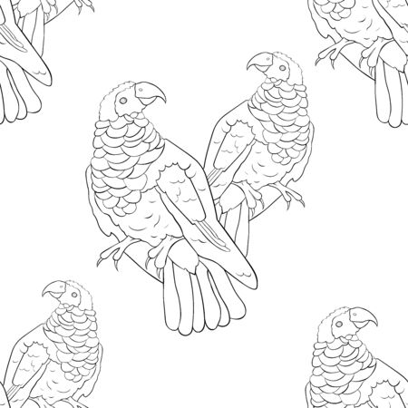 coloring seamless pattern eagle black-red griffon parrot vector illustration