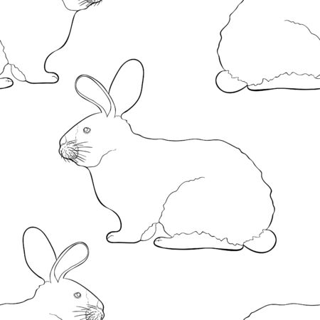 coloring seamless pattern home pet Californian rabbit vector illustration 矢量图像