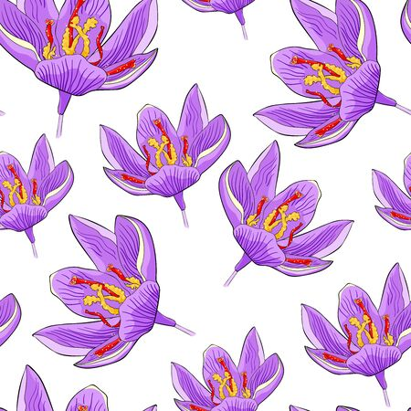 seamless pattern spring saffron flower vector illustration