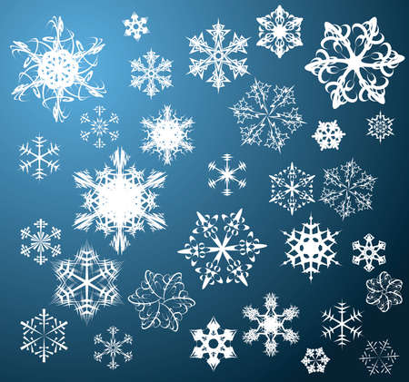 Various snowflakes on blue background photo