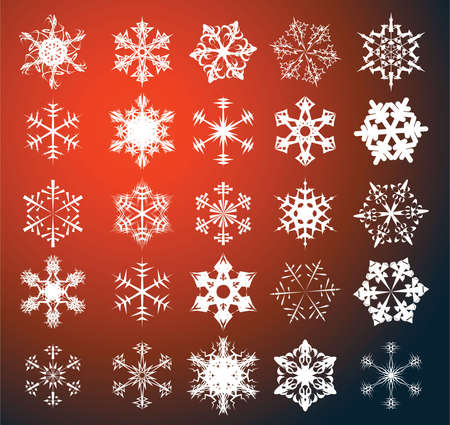 Various snowflakes on a red background photo