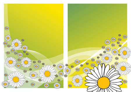 Abstract spring meadow with flowers photo