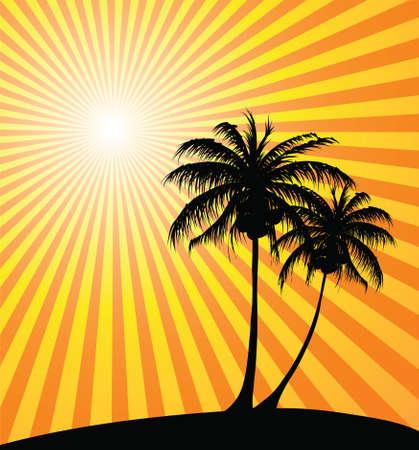 Sunset on the beach Stock Photo - 2467156