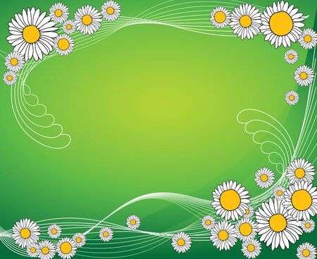 oxeye: Abstract spring meadow with flowers