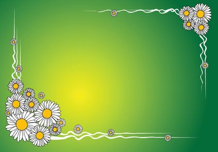 oxeye: Spring floral background - frame made from flowers