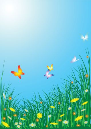 oxeye: Spring meadow with flowers and butterflies Stock Photo