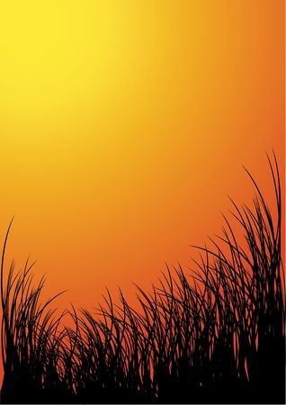 pasturage: Vector grass silhouette background - sunset Stock Photo