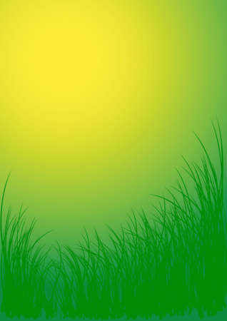 pasturage: Green vector grass background Stock Photo